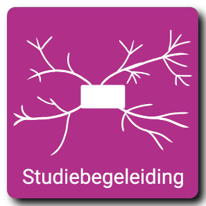 Studiebegeleiding - Remedial Teaching Elst | RTAZ